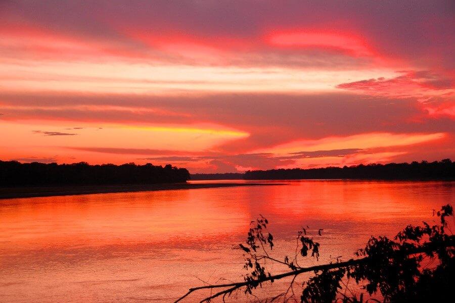 Три глотка Аяуаски в дебрях перуанской Амазонки...