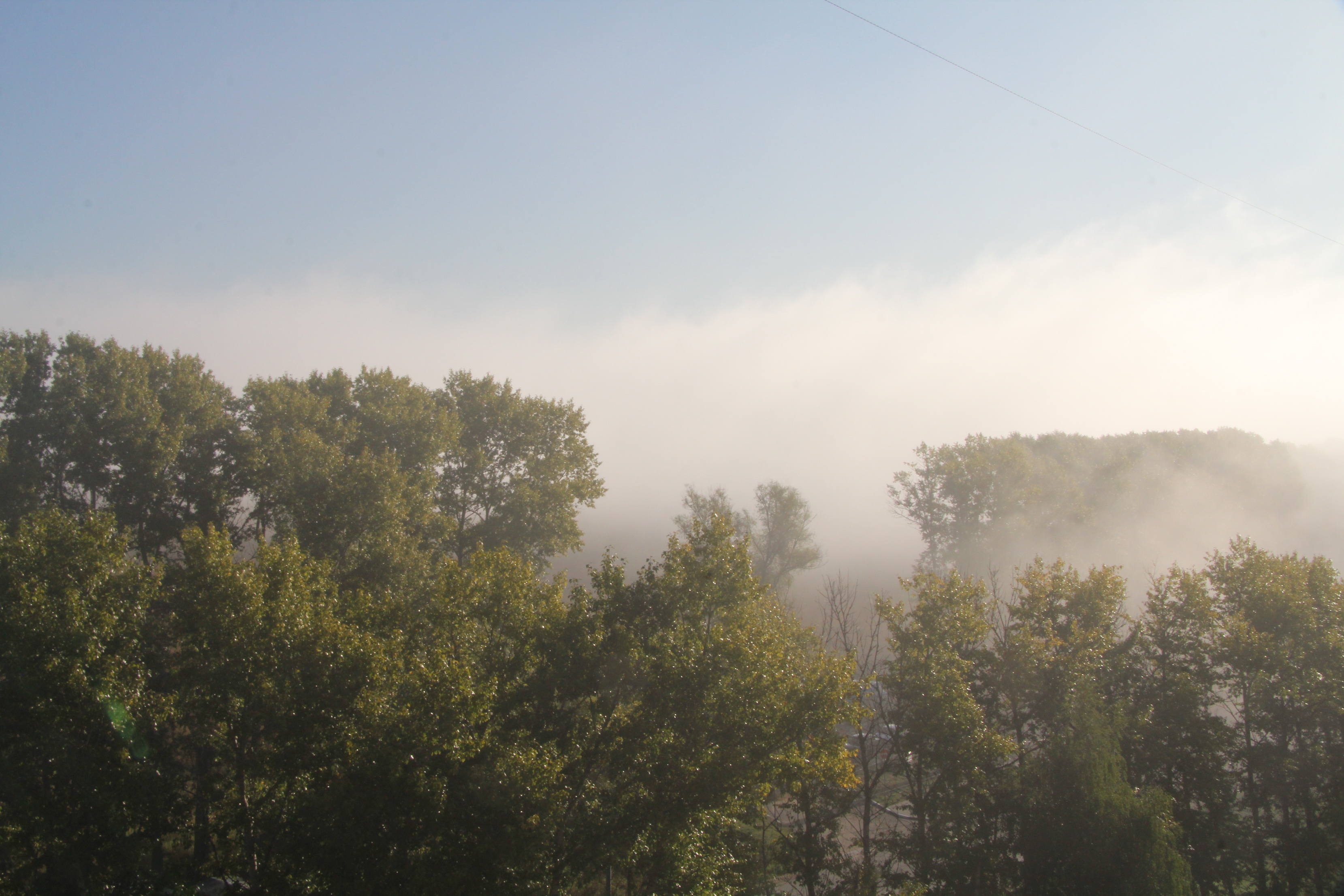 Туман-туманище...